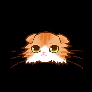 猫イラストまんじゅうスコロングレッドタビー&ホワイト