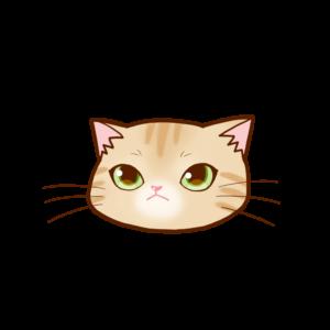 猫イラストまんじゅう顔Aクリーム-manjyu cat face cream-