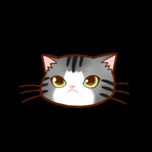 猫イラストまんじゅう顔Aサバ白