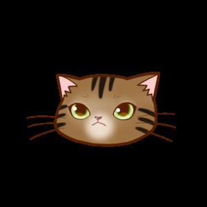 猫イラストまんじゅう顔Aアメショブラウンタビー