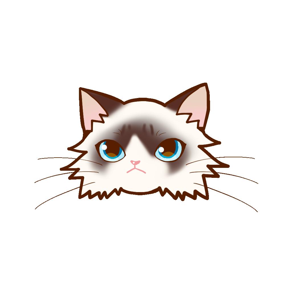 猫イラストまんじゅうラグドール