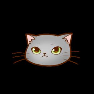 猫イラストまんじゅう顔Aグレー-manjyu cat face gray-