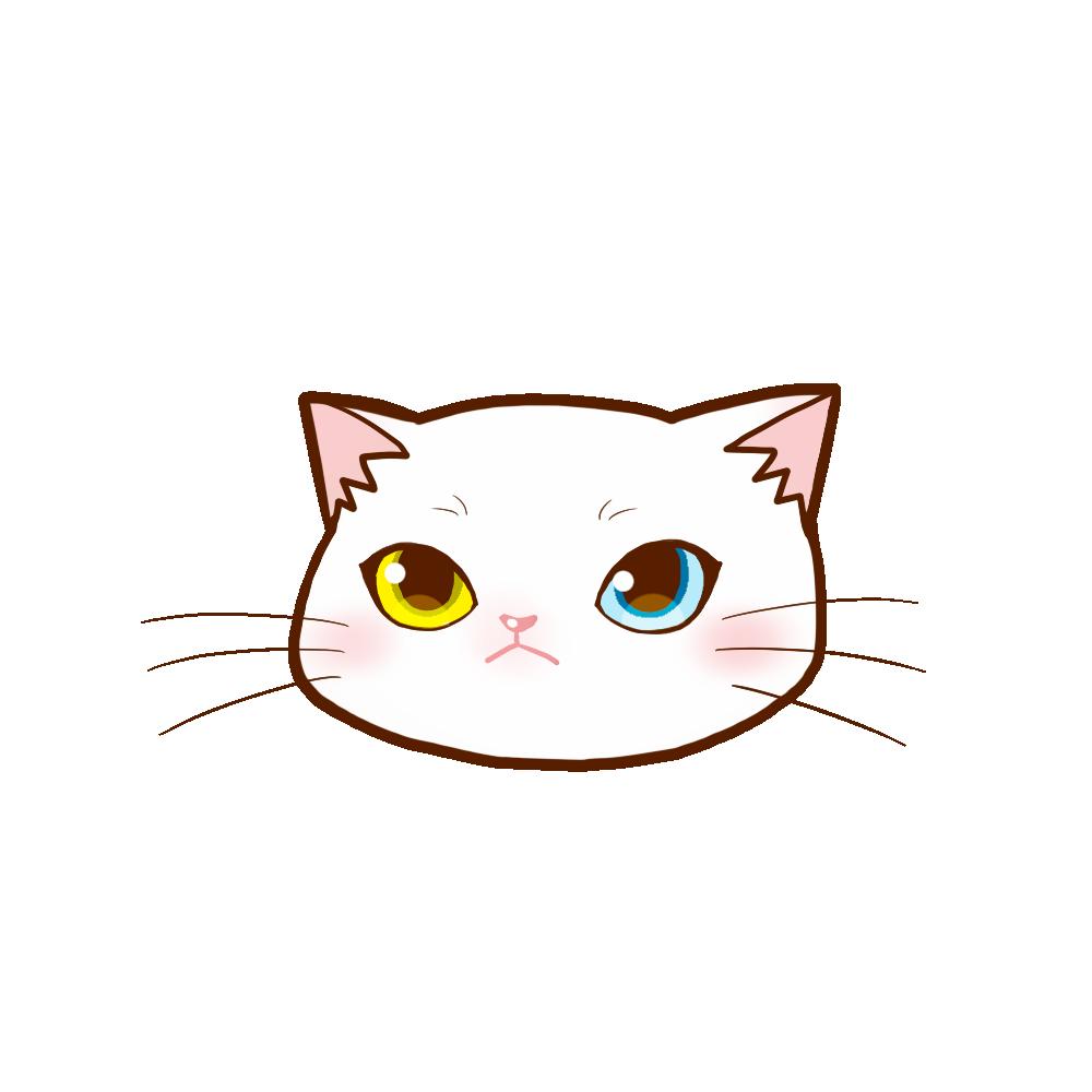 まんじゅう猫顔a 白 猫画工房