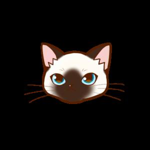 まんじゅう猫顔aシャム 猫画工房