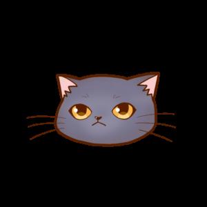 猫イラストまんじゅう顔Aシャルトリュー