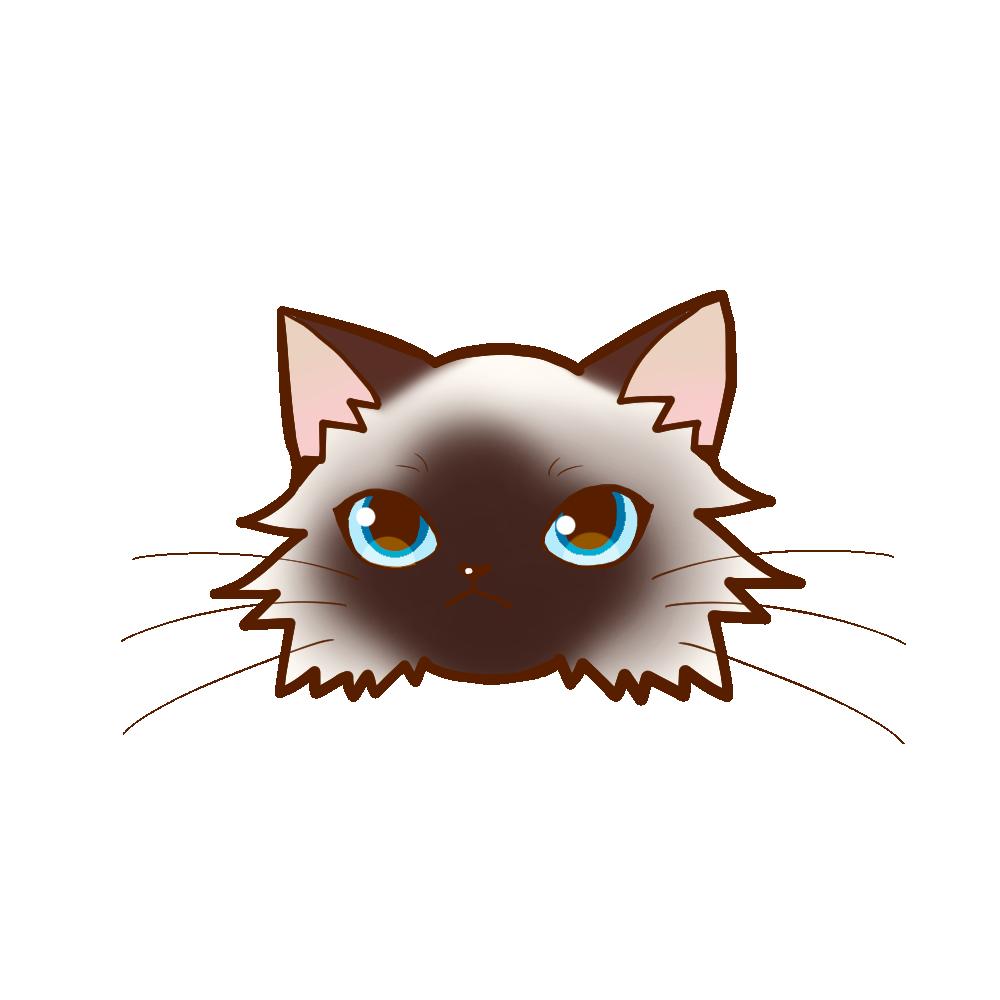 猫イラストまんじゅうバーマン