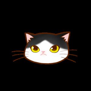 猫イラストまんじゅう顔Aハチワレ