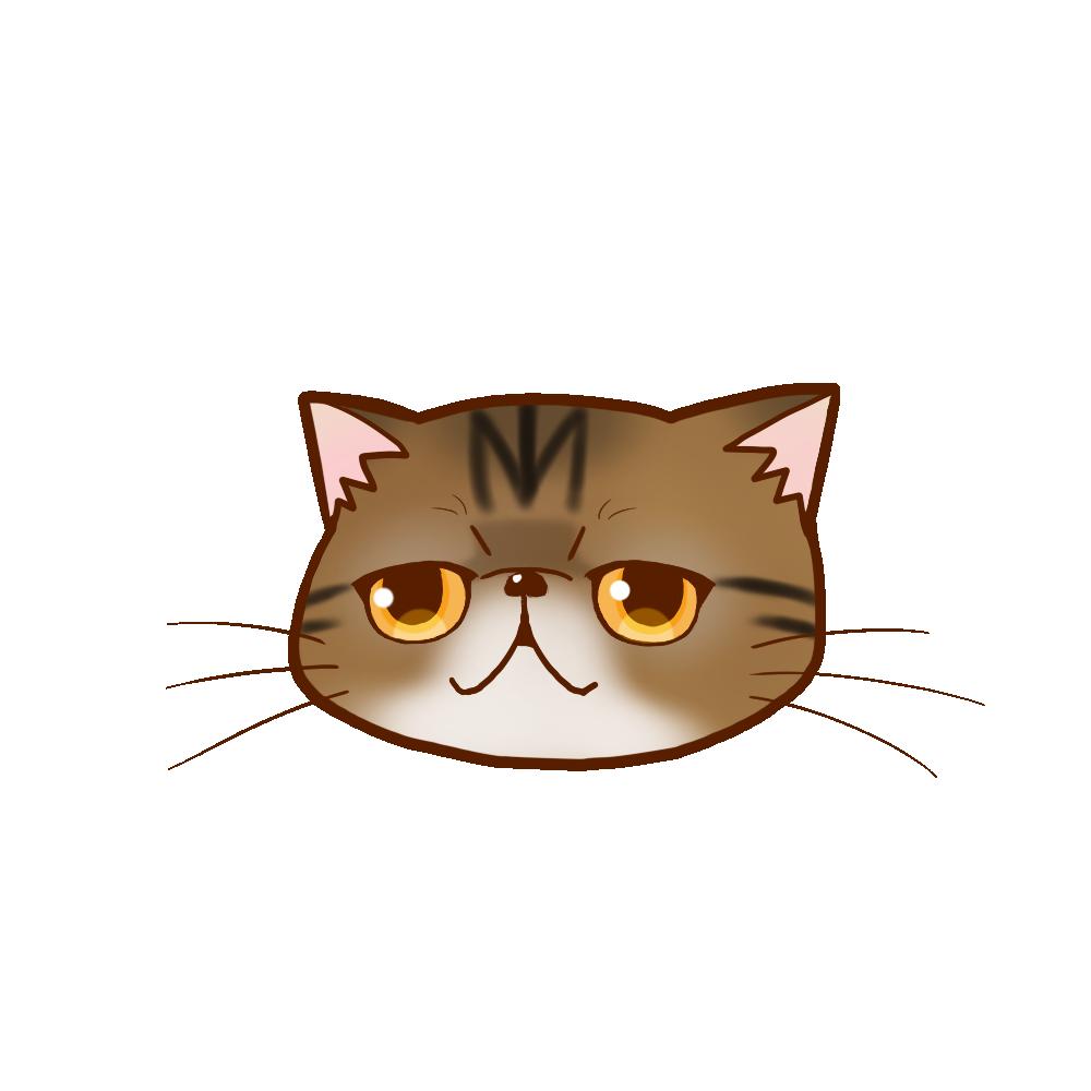 猫イラストまんじゅうエキゾチックブラウンタビー