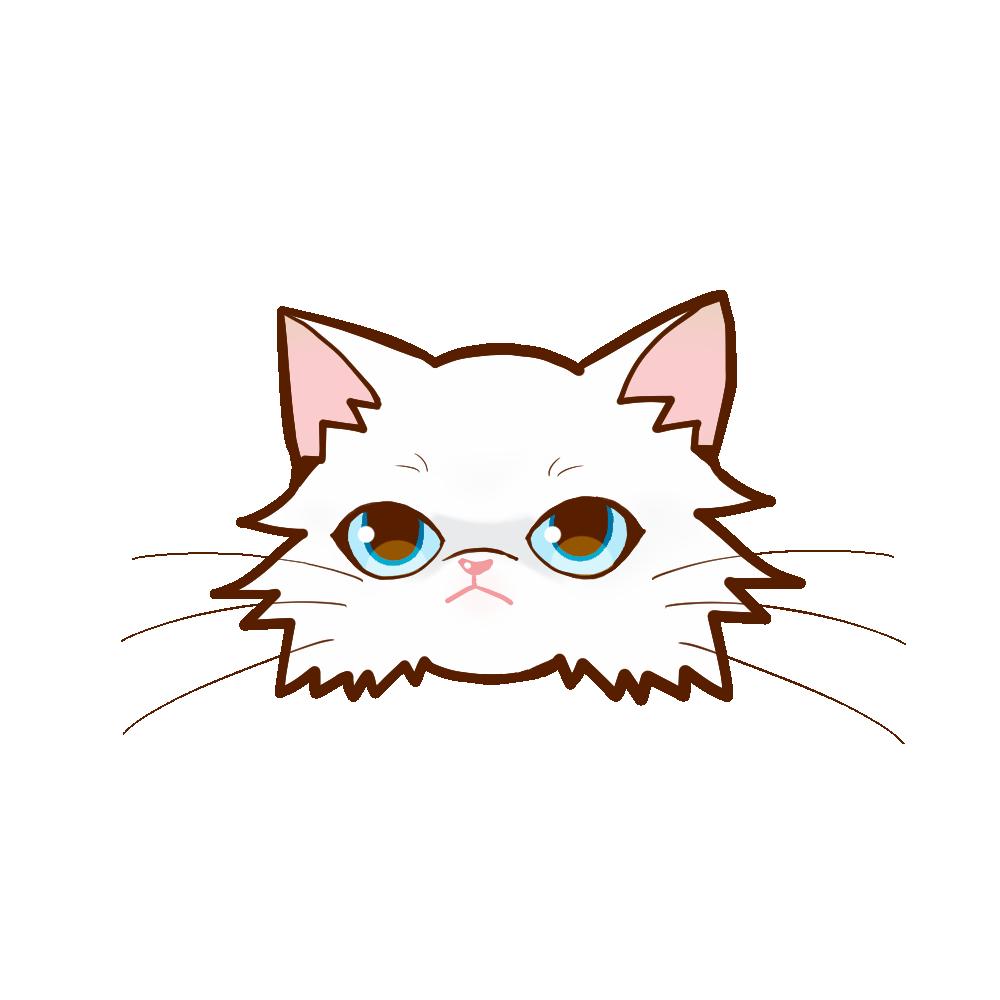 猫イラストまんじゅうペルシャチンチラホワイトソリッド