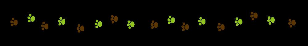 猫の足跡ラインブラウン×グリーン-Cat footprint Line material brown green-