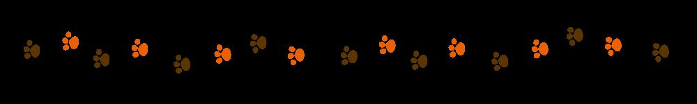 猫の足跡ラインブラウン×オレンジ-Cat footprint Line material brown orange-