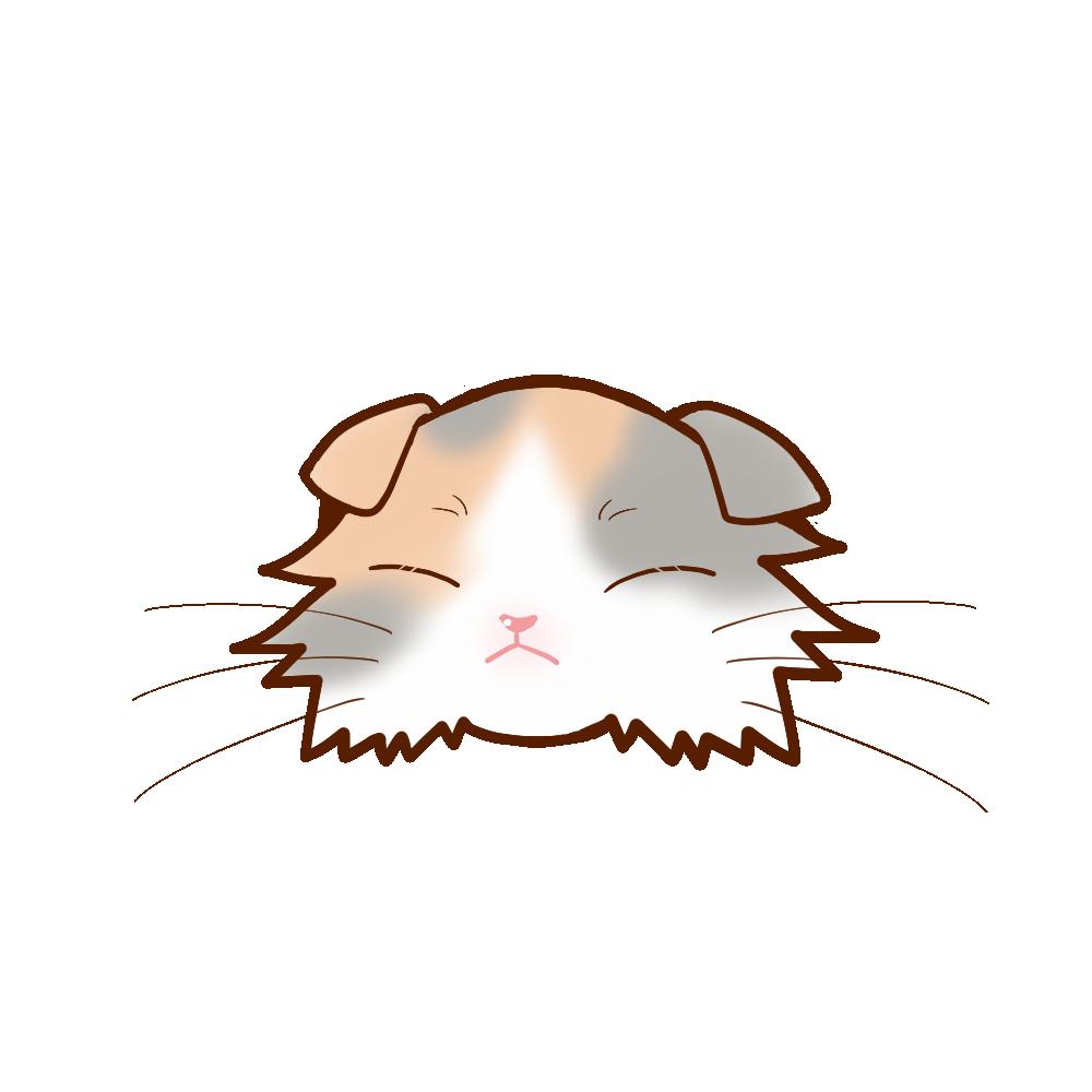 猫イラストまんじゅうスコロングダイリュートキャリコB
