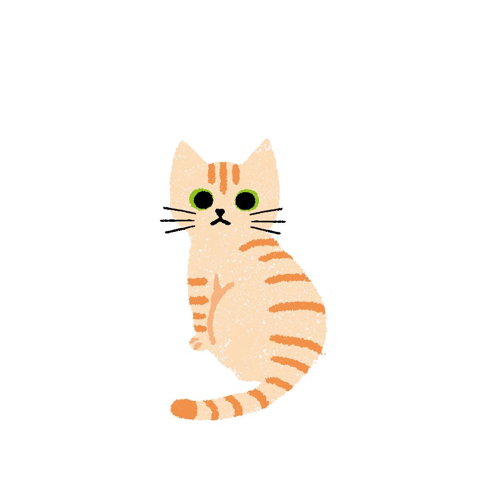 がさがさタッチふりむく猫1クリームタビー