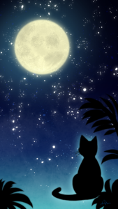 スマホ用壁紙満月と猫-【Wallpaper for smartphone】Full moon and cat-