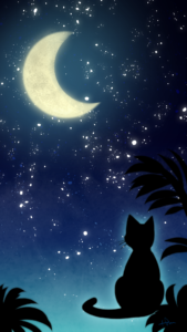 スマホ用壁紙三日月と猫-【Wallpaper for smartphone】Crescent moon and cat-