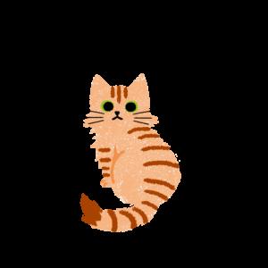 がさがさタッチふりむく猫2茶トラ