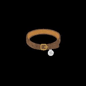 迷子札のついた首輪ブラウン