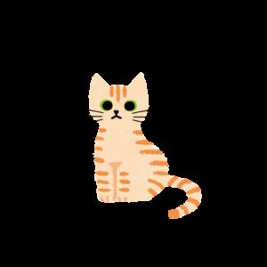 がさがさタッチおすわり猫1クリームタビー