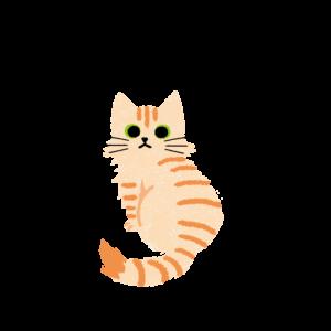 がさがさタッチふりむく猫2クリームタビー