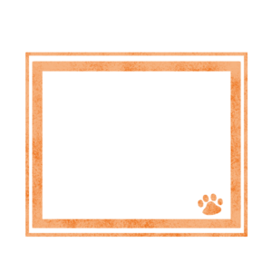 シンプルラインと猫の肉球フレームオレンジ-Simple line and cat's pad frame Orange-