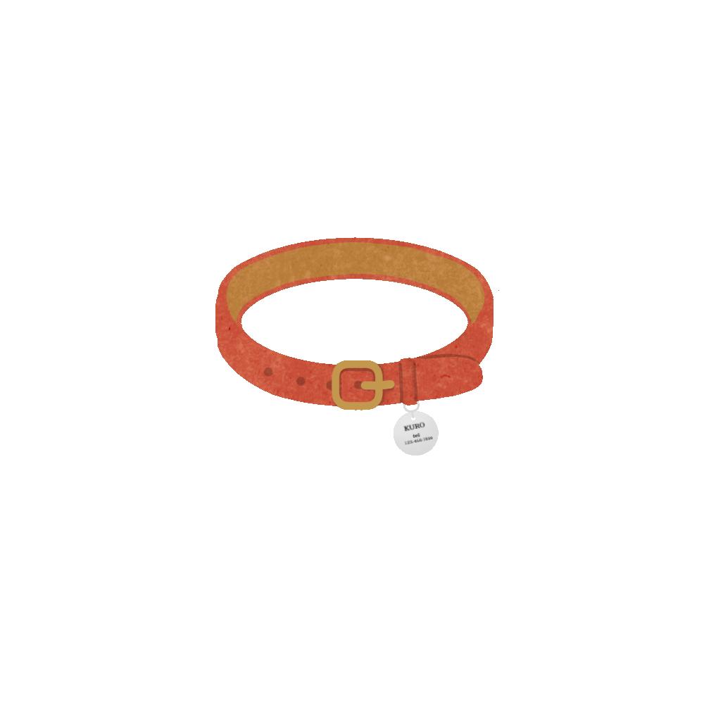 迷子札のついた首輪レッド