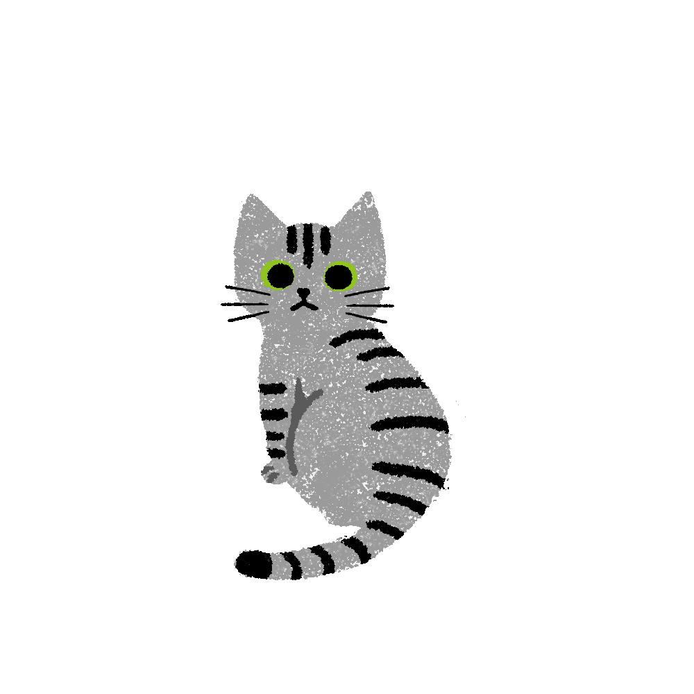 がさがさタッチふりむく猫1サバトラ