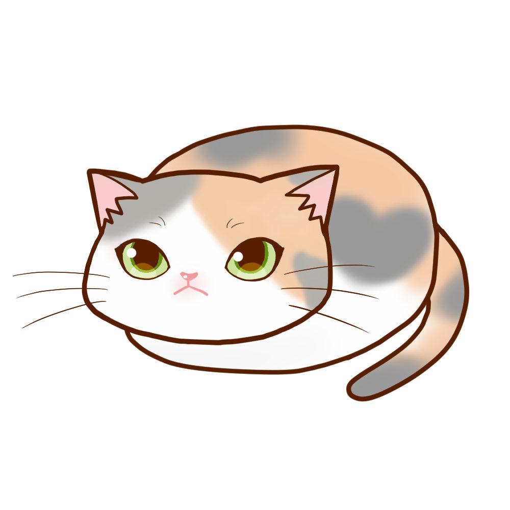 まんじゅう三毛 ダイリュート全身A-Manju cat dilute calico whole body A-