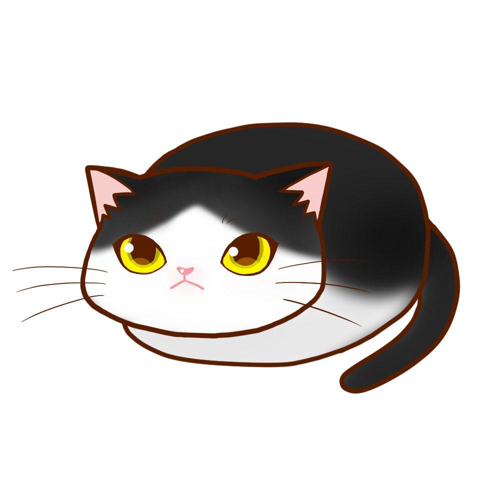 まんじゅうハチワレ全身A-Manju cat hachiware whole body A-