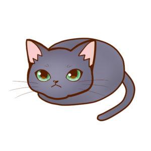 まんじゅうロシアンブルー全身A-Manju cat russianblue whole body A-