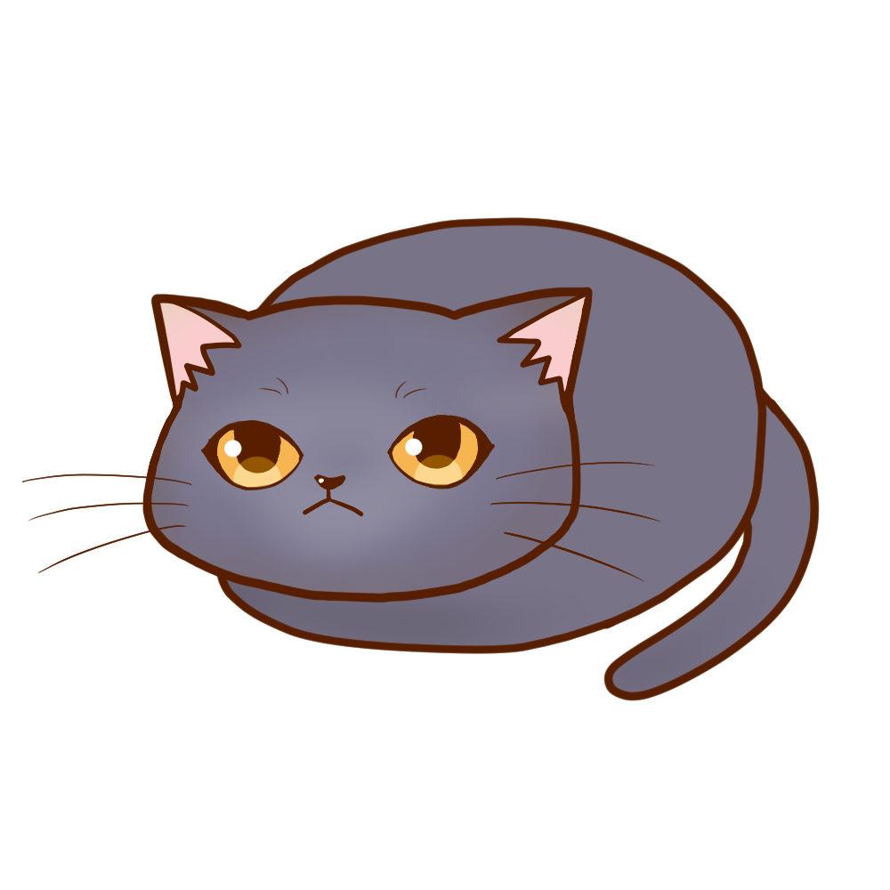まんじゅうシャルトリュー全身A-Manju cat chartreux whole body A-