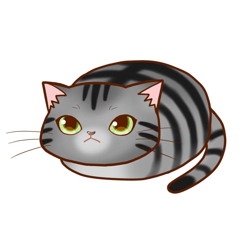 まんじゅうサバトラ全身A-Manju cat sabatora whole body A-