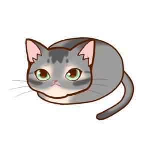 まんじゅうアビブルー全身A-Manju cat aby bluel whole body A-