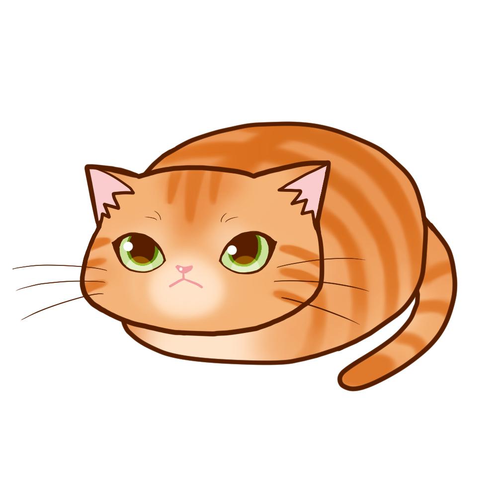 まんじゅう茶トラ全身A-Manju cat redtabby whole body A-