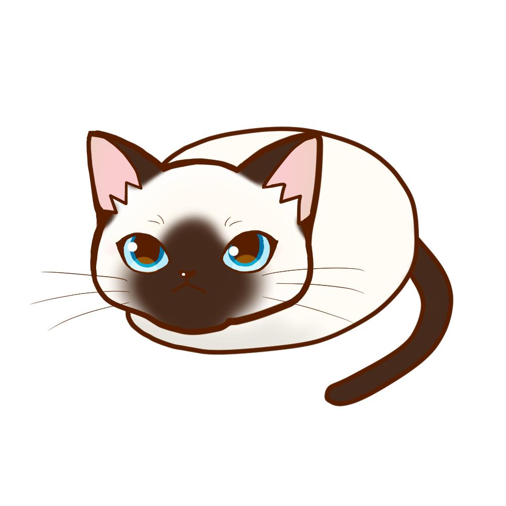 まんじゅうシャム全身A-Manju cat siamese whole body A-