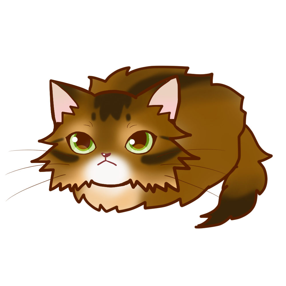 まんじゅうソマリルディ全身A-Manjyu cat somali-ruddy whole body A-