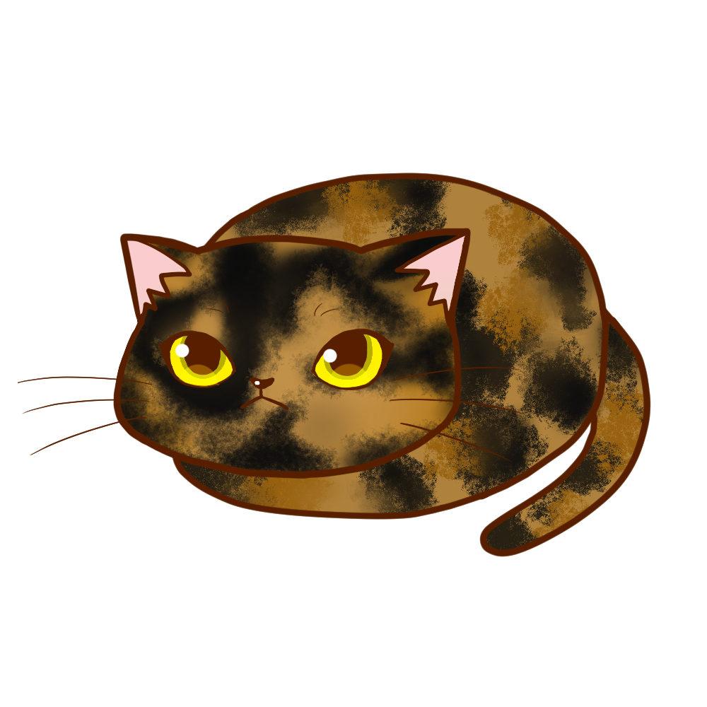 まんじゅうサビ全身A-Manju cat sabi whole body A-