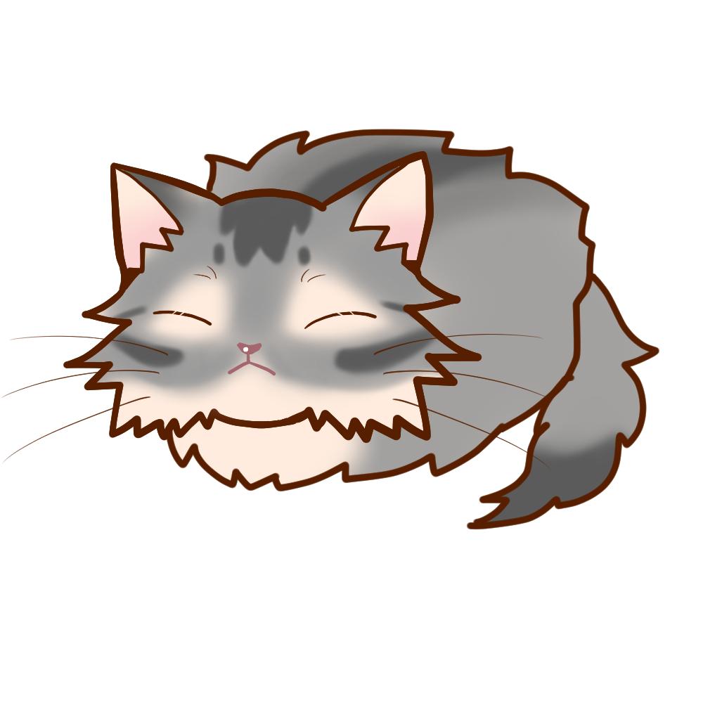 まんじゅうソマリブルー全身B-Manjyu cat somali-blue whole body B-