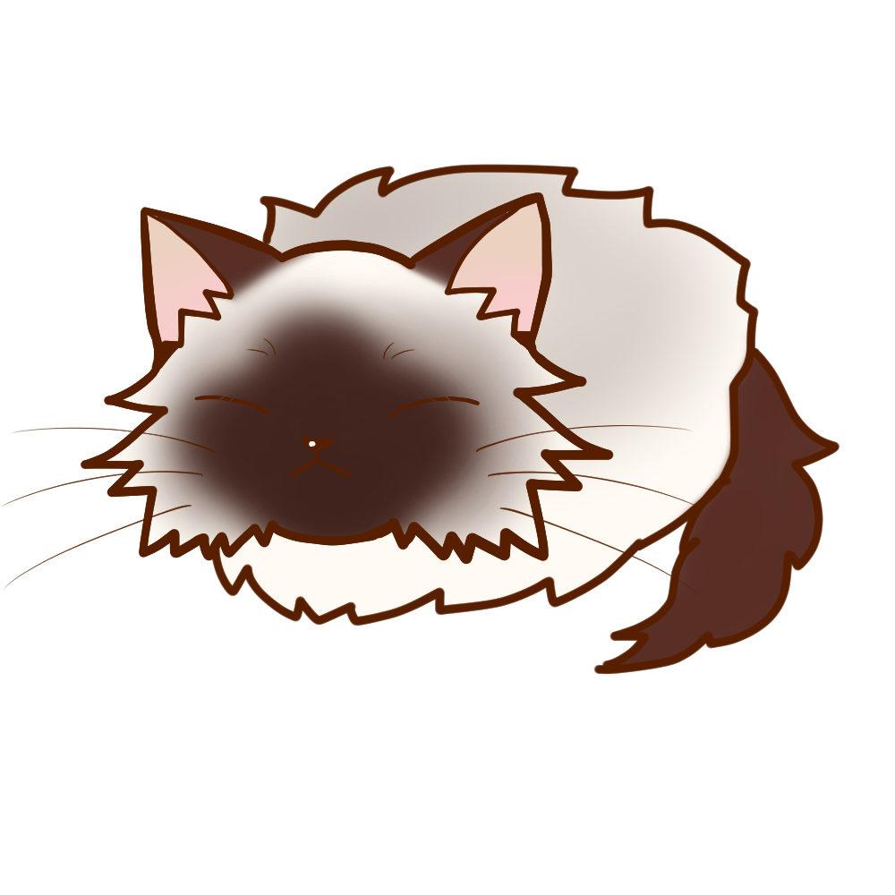 まんじゅうバーマン全身B-Manjyu cat birman whole body B-