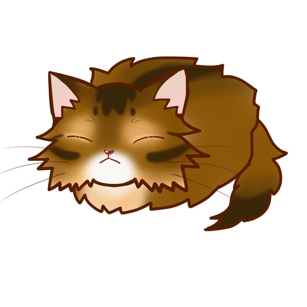 まんじゅうソマリルディ全身B-Manjyu cat somali-ruddy whole body B-