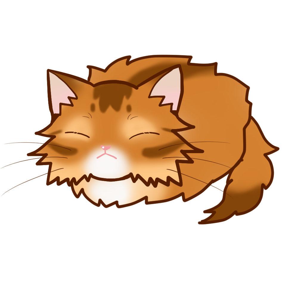 まんじゅうソマリレッド全身B-Manjyu cat somali-red whole body B-