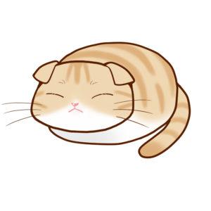 まんじゅうスコクリームタビー&ホワイト全身B-Manjyu cat sco-cream-white whole body B-