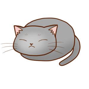 まんじゅうグレー全身B-Manjyu cat gray whole body B-