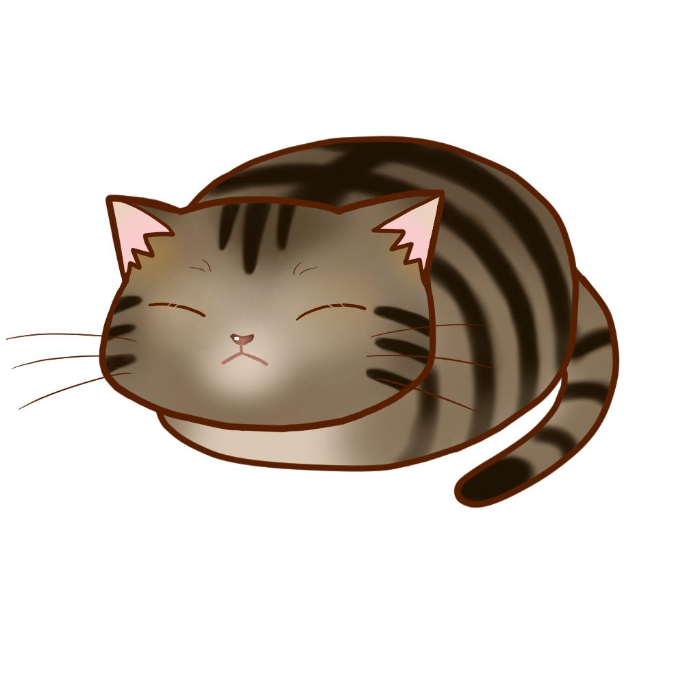 まんじゅうキジトラ全身B-Manju cat kijitora whole body B-