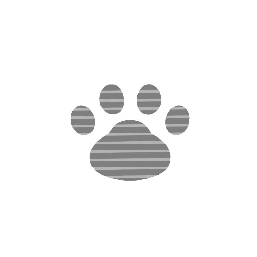 -border-paw-pad-gray-ボーダー肉球足跡グレー