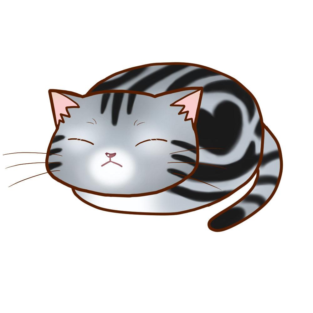 まんじゅうアメショシルバータビー全身B-Manju cat amesho silvertabby whole body B-
