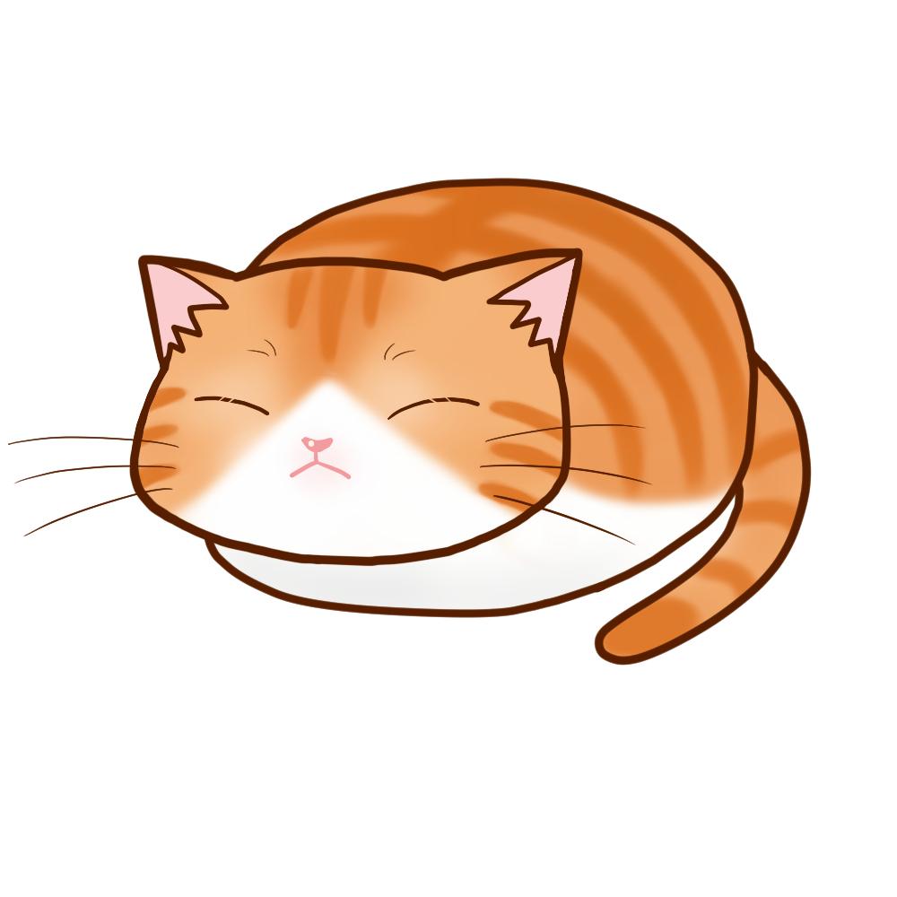 まんじゅう茶白全身B-Manju cat redtabby&white whole body B-