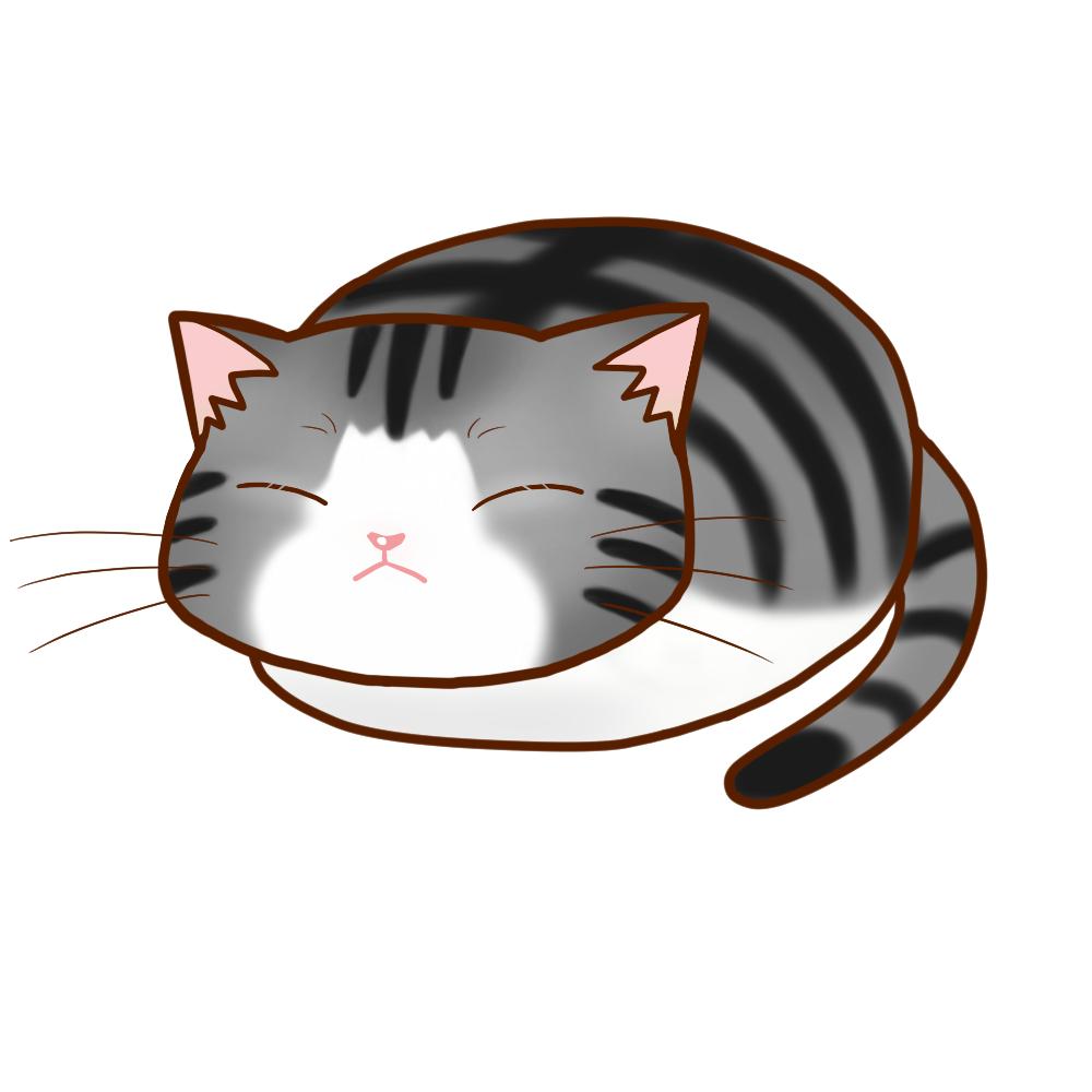 まんじゅうサバ白全身B-Manju cat sabashiro whole body B-