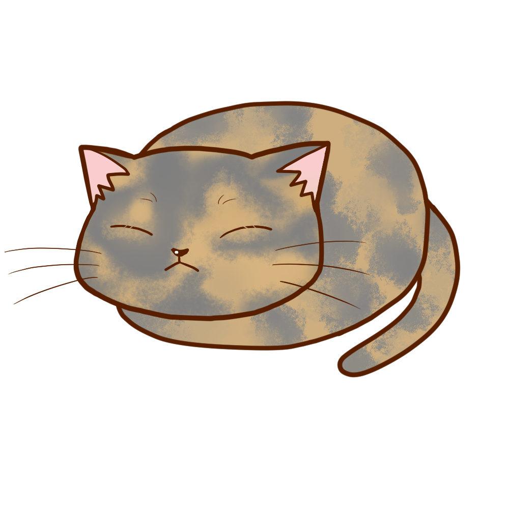 まんじゅうサビダイリュート全身B-Manju cat sabi dilute whole body B-
