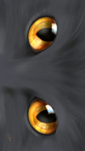 -cat-smartphone-wallpaper-cats-eye-copper-real-スマホ用壁紙CATSEYEカッパー