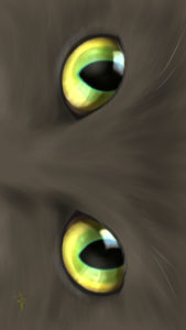 -cat-smartphone-wallpaper-cats-eye-Hazel-real-スマホ用壁紙CATSEYEヘーゼル